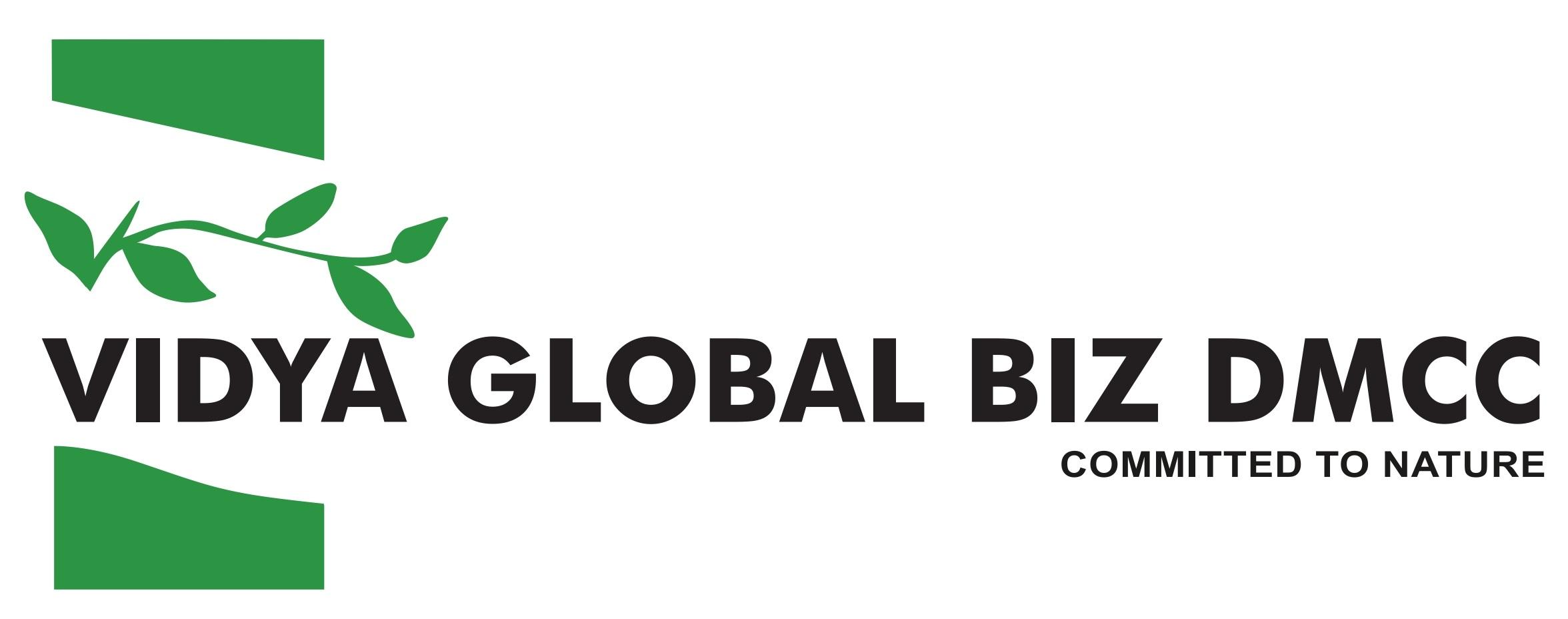 Vidya Global Biz DMCC